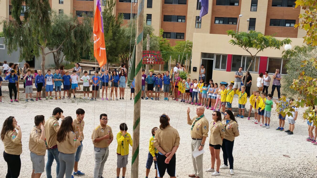 scout impeesa 11