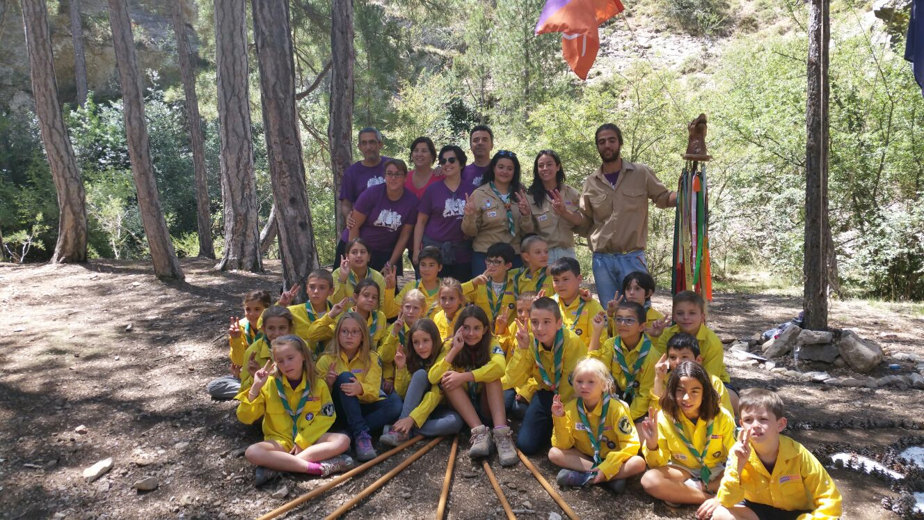 scout impeesa 15