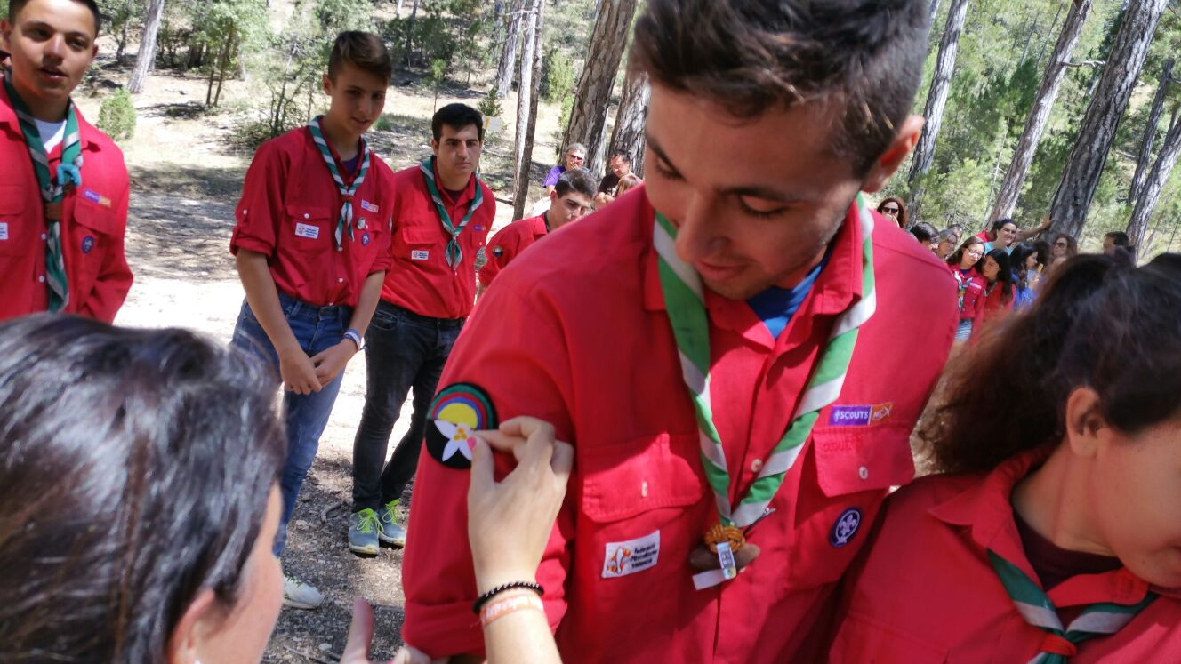 scout impeesa 6