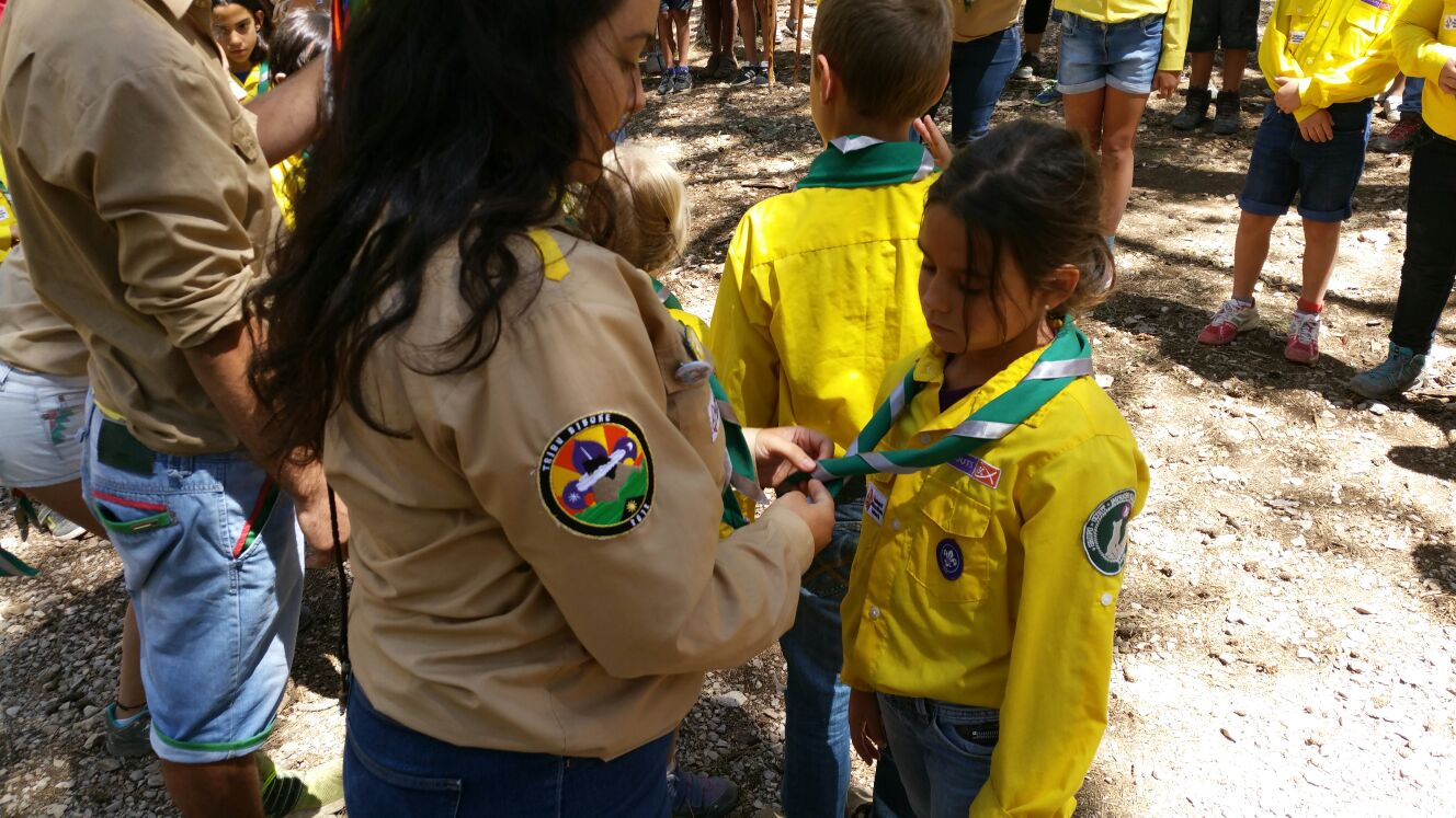 scout impeesa 8
